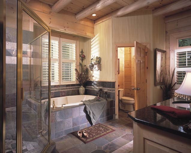 Modern Cabin Bathroom