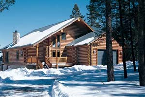 winter log home