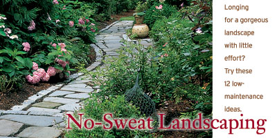 No-Sweat Landscaping