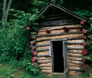 Root cellar made from logs