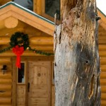 1-christmas-log-home