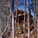 1-log-cabin-in-woods-we