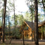 Handcrafted Log Home in the Woods