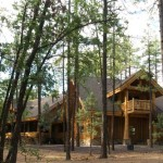 Log Home in the Woods photo 4
