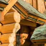 Montana log home roof