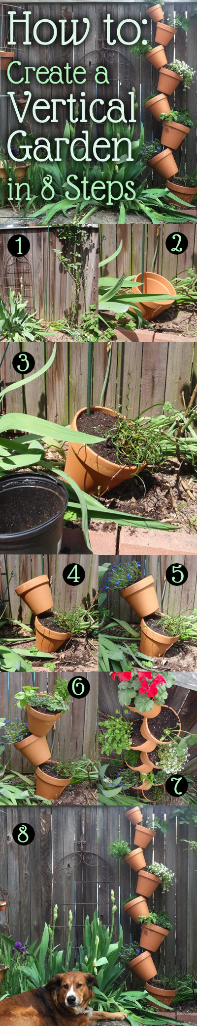 A step-by-step diagram for creating your own vertical garden.
