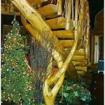 spiral-log-stairs_9