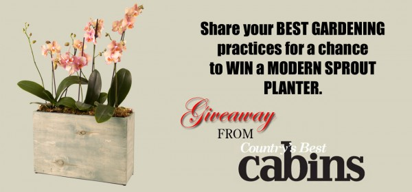 Modern-Sprout-planter-giveaway